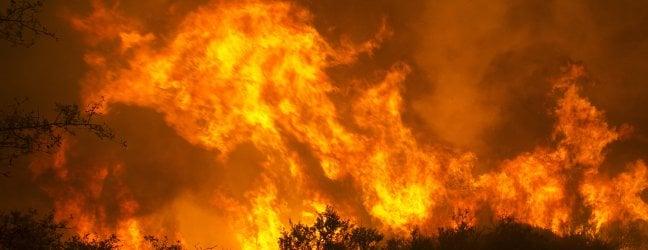 """Emergenza incendi, scuole chiuse a San Francisco: """"Aria inquinata come a Pechino"""""""